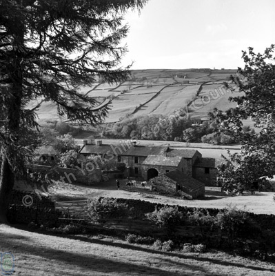 Low Whita Farm, Swaledale
